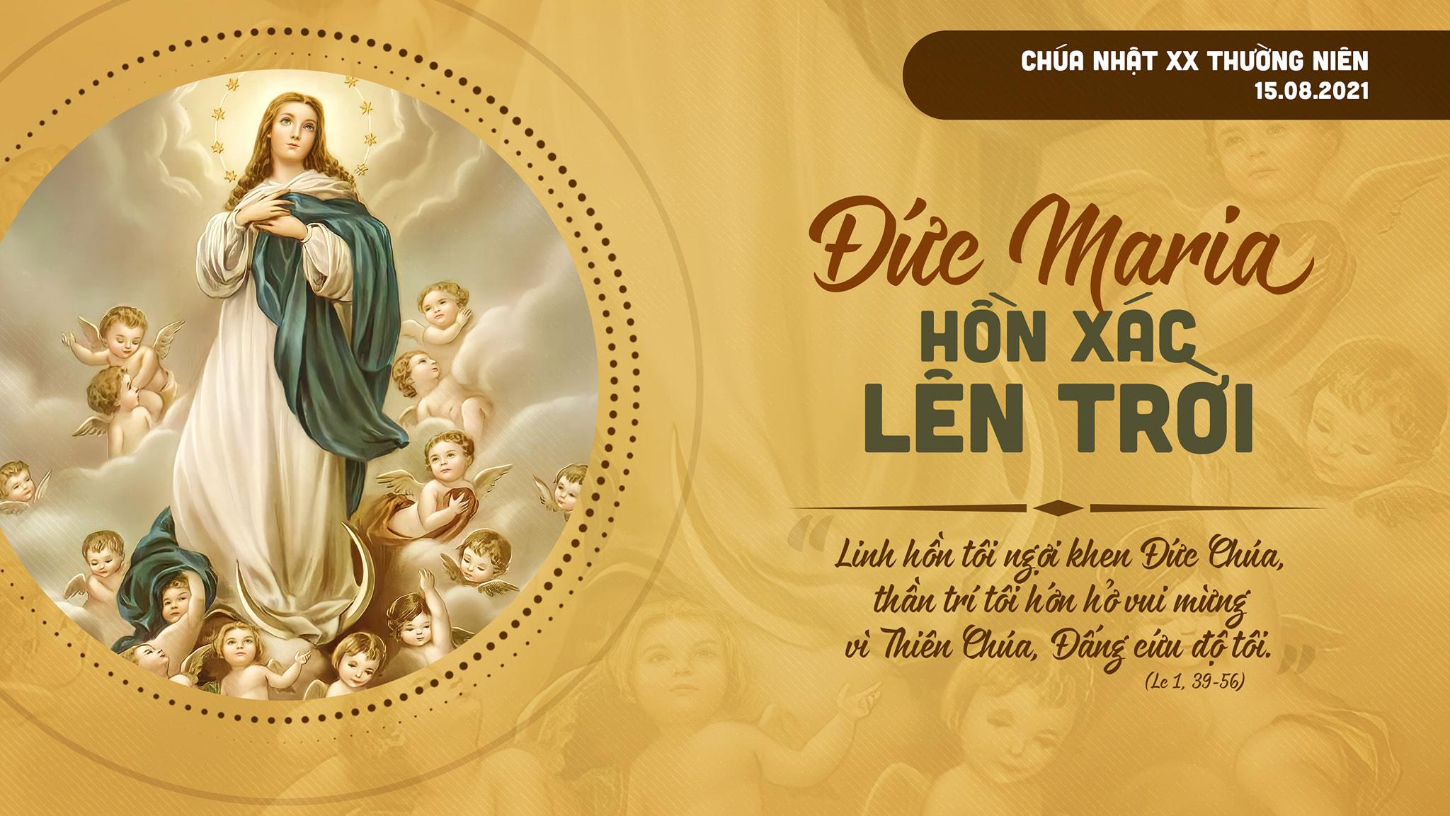 Videos: Giảng Lễ Đức Mẹ Lên Trời (2015 - 2021)